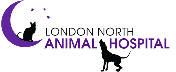London North Animal Hospital